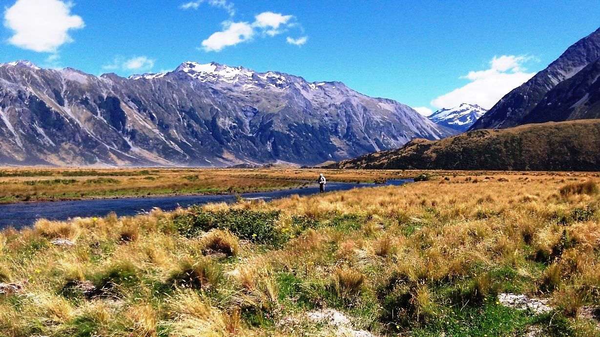 Fly fishing guides new zealand nzpfga for New zealand fish
